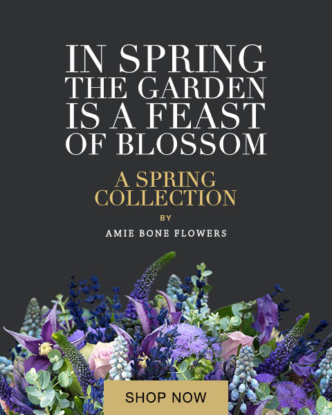Spring Flower Collection from Amie Bone