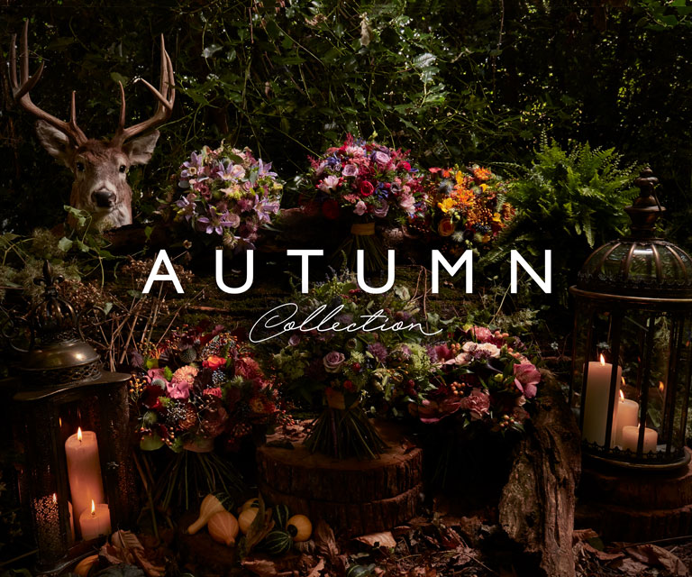 An Autumn collection by Amie Bone featuring bouquets in an outdoor Autumn scene sitting alonsigside a Stag